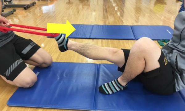 前脛骨筋トレーニング